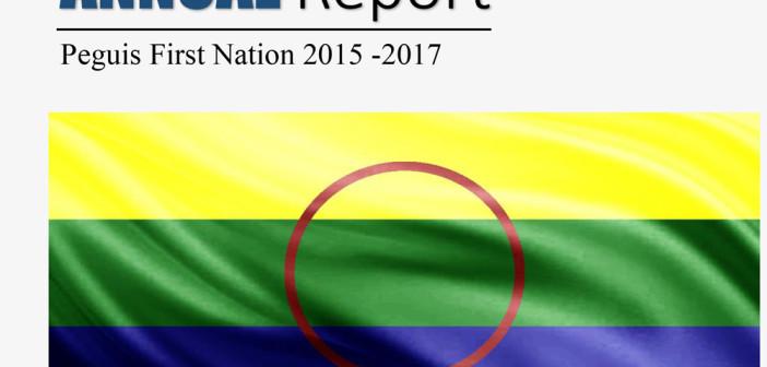 Annual Report 2015-2017 Draft
